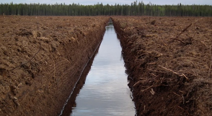 The logistics and transportation of peat moss made efficient