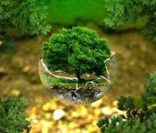 Environmental training programme to maintain a green dialogue