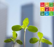 What is sustainable development – and why is it important to Greencarrier?