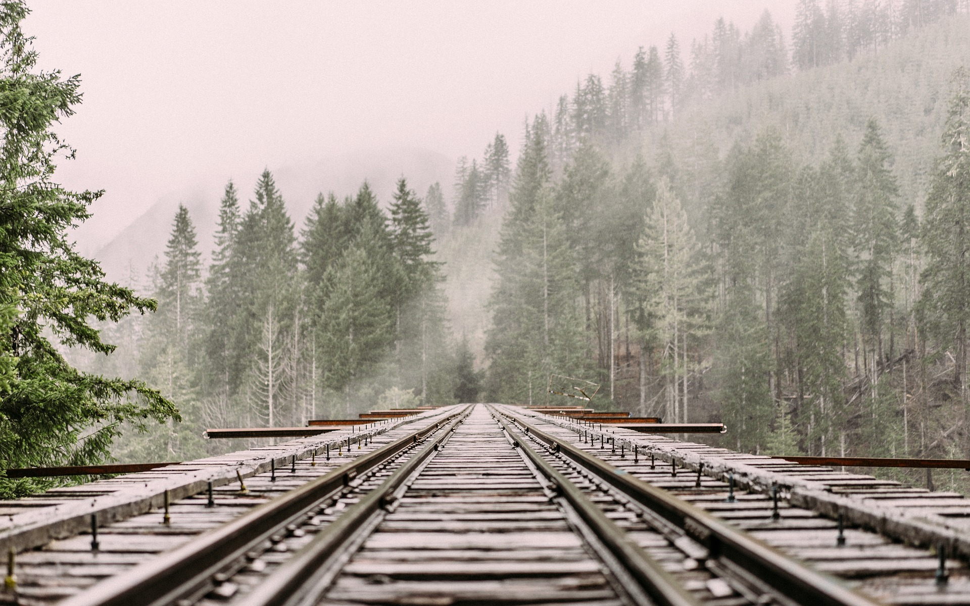 Top 4 benefits of rail freight - The Greencarrier blog